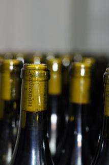 Gal Zohar - bottling Shmueli
